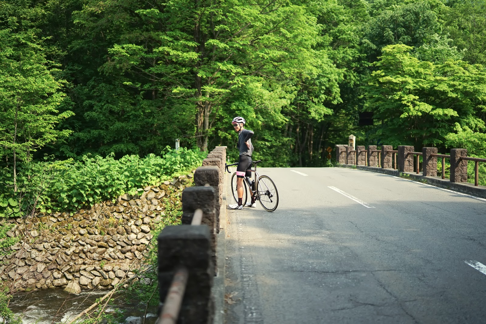 Cyclist on outlands bike tour bridge and Aomori Beech Forest